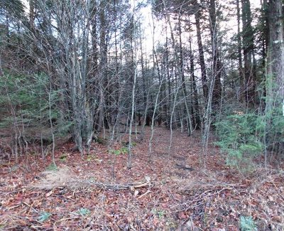 Liberty Residential Lots & Land For Sale: Tanzman Rd