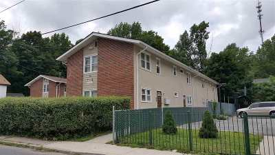 Monticello Multi Family Home For Sale: 36-40 Cottage Street