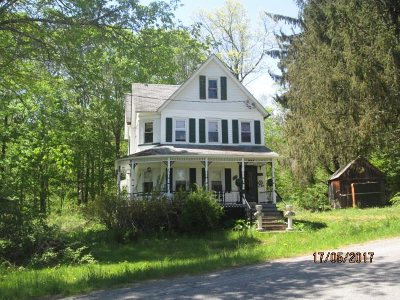 Livingston Manor, Roscoe Single Family Home For Sale: 1236 Shandelee Rd.