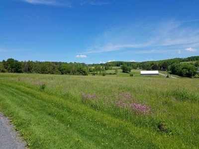 Youngsville NY Residential Lots & Land For Sale: $109,900
