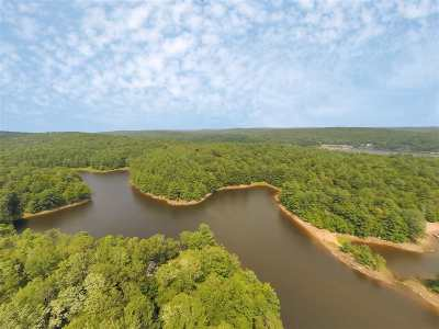 Bethel Residential Lots & Land For Sale: Pine Grove Rd