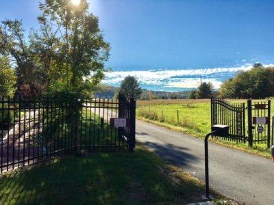 Kauneonga Lake Single Family Home For Sale: 37 Horseshoe Lake Rd.