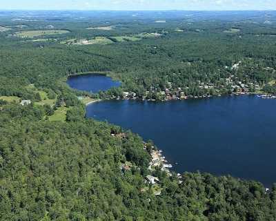 Kauneonga Lake Single Family Home For Sale: 24 Lakeview Rd.