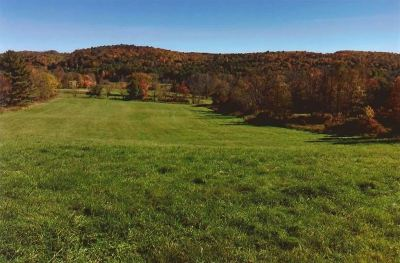Cochecton Residential Lots & Land For Sale: 2715 State Route 17b