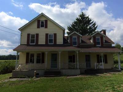 Callicoon Single Family Home For Sale: 251 Kautz Rd