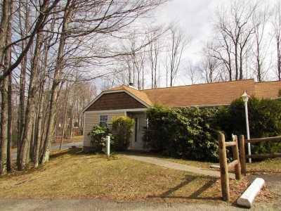 Monticello NY Townhouse For Sale: $55,000
