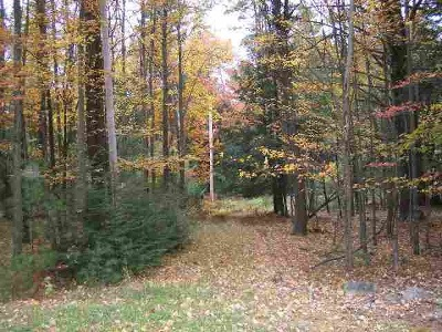 Forestburgh Residential Lots & Land For Sale: Rt. 42
