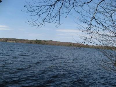 White Lake Single Family Home For Sale: 51 Lake Ridge Road