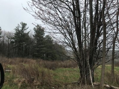 Monticello NY Residential Lots & Land For Sale: $78,000