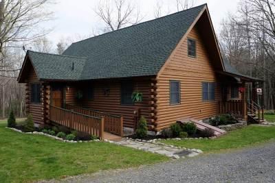 Wurtsboro Single Family Home For Sale: 67 Mount Vernon