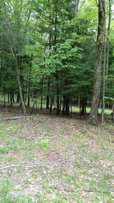 Bethel Residential Lots & Land For Sale: Old Tacy Rd Tr 95
