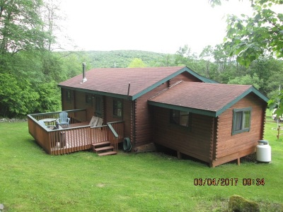 Livingston Manor, Roscoe Single Family Home For Sale: 491 Hazel Rd