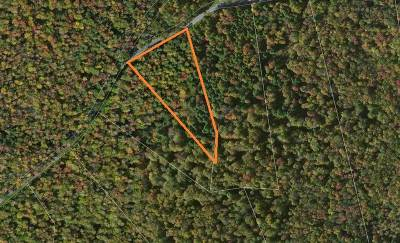 Forestburgh Residential Lots & Land For Sale: S French Clearing