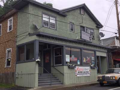 Callicoon Commercial For Sale: 28 Upper Main Street