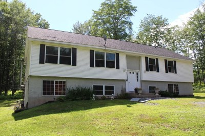 Monticello NY Single Family Home For Sale: $199,999