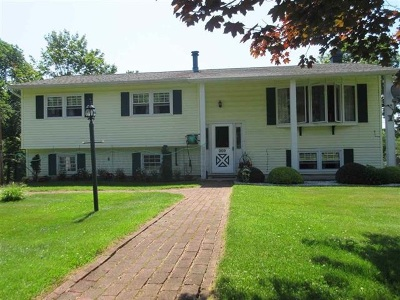 Forestburgh Single Family Home For Sale: 209 Dill Road