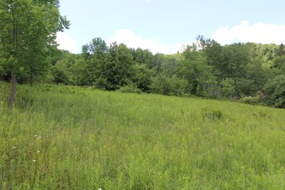 Sullivan County Residential Lots & Land For Sale: 37 Hunter Lake Road