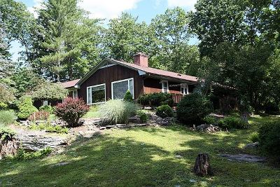 Callicoon Single Family Home For Sale: 55 Delvue Rd