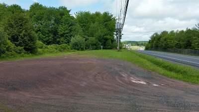 Monticello Commercial For Sale: Bridgeville Road