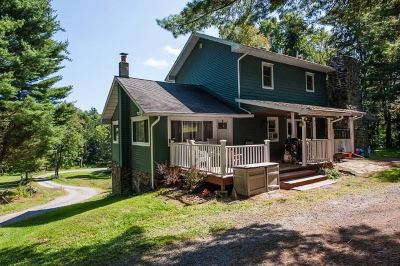 Cochecton Single Family Home For Sale: 119 Dailey Road