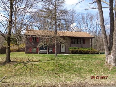 Circleville NY Single Family Home For Sale: $150,000