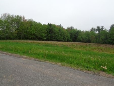 Bethel Residential Lots & Land For Sale: Best Road