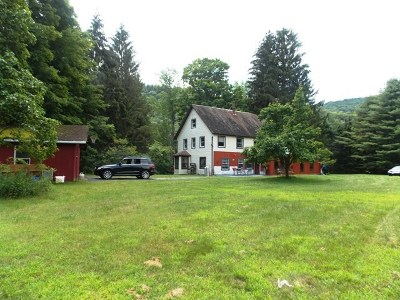 Roscoe NY Single Family Home For Sale: $290,000