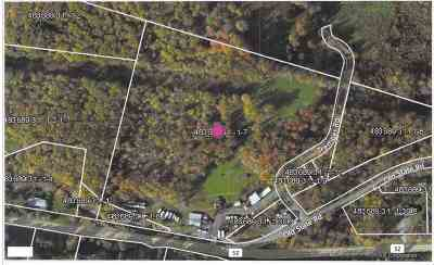Commercial For Sale: 3802 W St. Route 52
