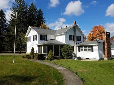 Sullivan County Single Family Home For Sale: 6 Old Cochecton Road
