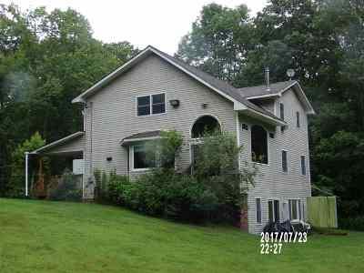 Narrowsburg Single Family Home For Sale: 169 Daub Road