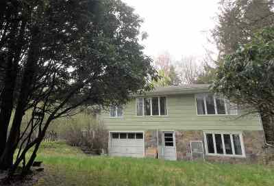 Livingston Manor NY Single Family Home For Sale: $89,900
