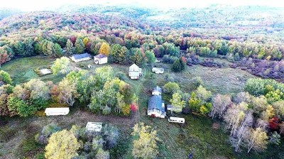 Parksville NY Single Family Home For Sale: $375,000