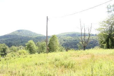 Willowemoc NY Residential Lots & Land For Sale: $79,000