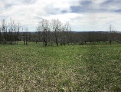 Residential Lots & Land For Sale: Chaffee Road Chaffee