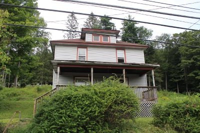 Livingston Manor NY Single Family Home For Sale: $59,000