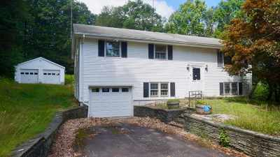 Rock Hill Single Family Home For Sale: 22.1 Wurtsboro Mtn Rd