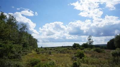 Residential Lots & Land For Sale: Lot 4 Farmstead