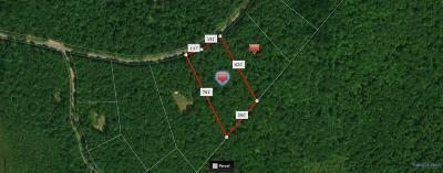 Narrowsburg Residential Lots & Land For Sale: 9.7 Crystal Lake Road