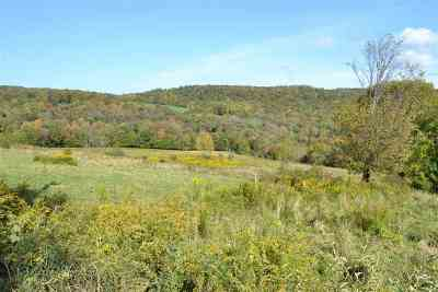 Long Eddy NY Residential Lots & Land For Sale: $62,000