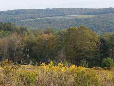Sullivan County Residential Lots & Land For Sale: Lot 9 - 4.3 Breezy Hill Rd.