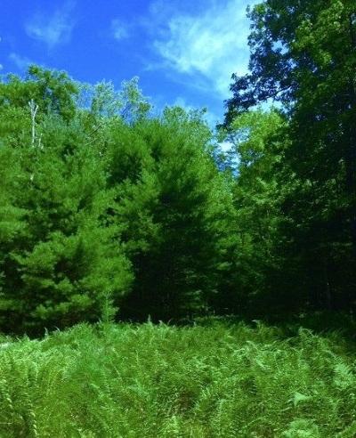 Glen Spey Residential Lots & Land For Sale: (65) Upper Lumber Road