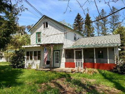 Livingston Manor, Roscoe Single Family Home For Sale: 10 Sattler