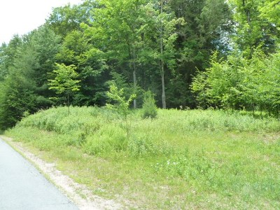Mongaup Valley Residential Lots & Land For Sale: 56 Roslyn Ridge