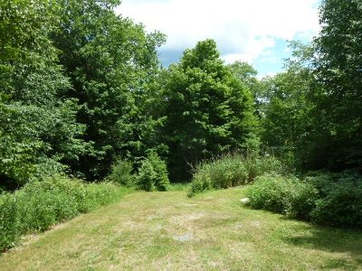 Mongaup Valley Residential Lots & Land For Sale: 25 Roslyn Ridge