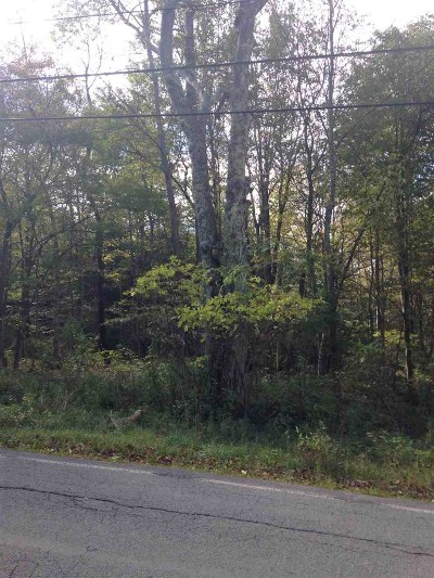 Fallsburg Residential Lots & Land For Sale: Laurel Ave Tr 34