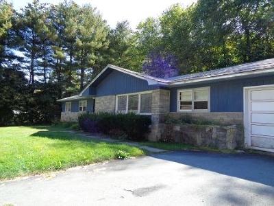 Wurtsboro Single Family Home For Sale: 28 Lindberg Avenue
