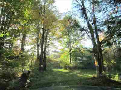 Sullivan County Single Family Home For Sale: 402 Shore