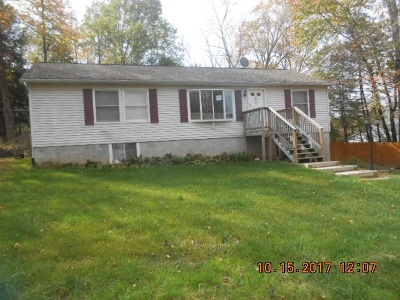 Sullivan County Single Family Home For Sale: 4 Beth Mohr Rd/Aka= 4 Cannon Blvd.