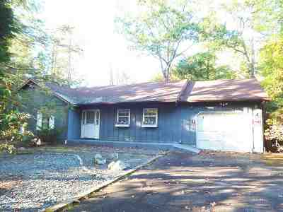 Rock Hill NY Single Family Home For Sale: $159,000
