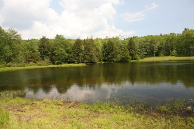 Residential Lots & Land For Sale: Terwilliger Road